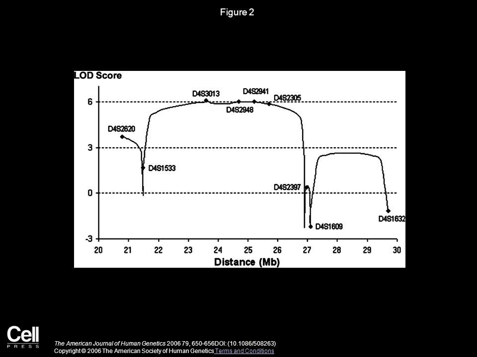 Figure 2 The American Journal of Human Genetics 2006 79, 650-656DOI: (10.1086/508263) Copyright © 2006 The American Society of Human Genetics Terms and Conditions Terms and Conditions