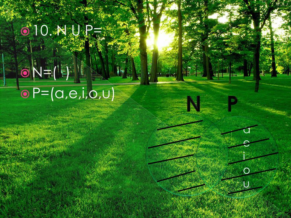  10. N U P=  N=( )  P=(a,e,i,o,u) aeiouaeiou
