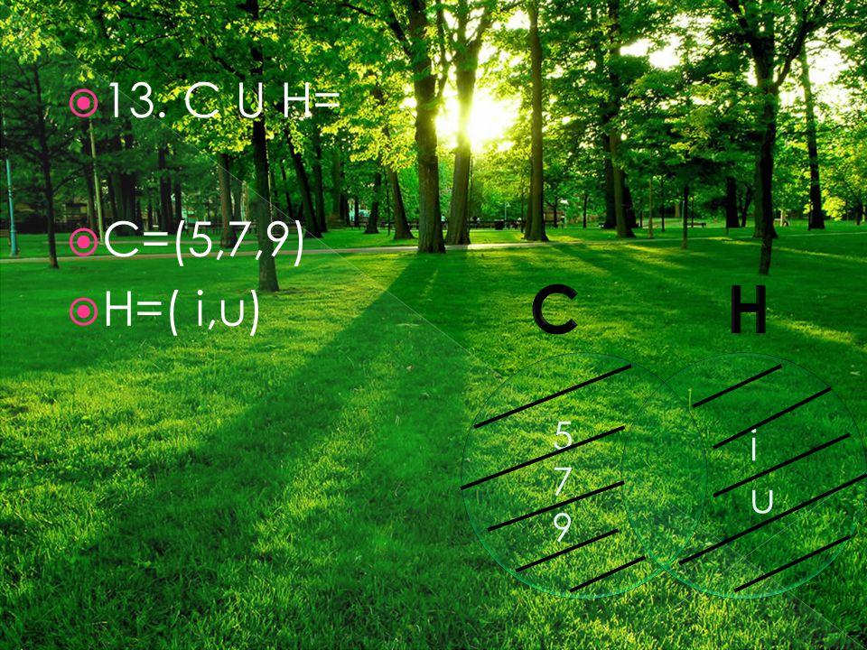  13. C U H=  C=(5,7,9)  H=( i,u) 579579 iuiu
