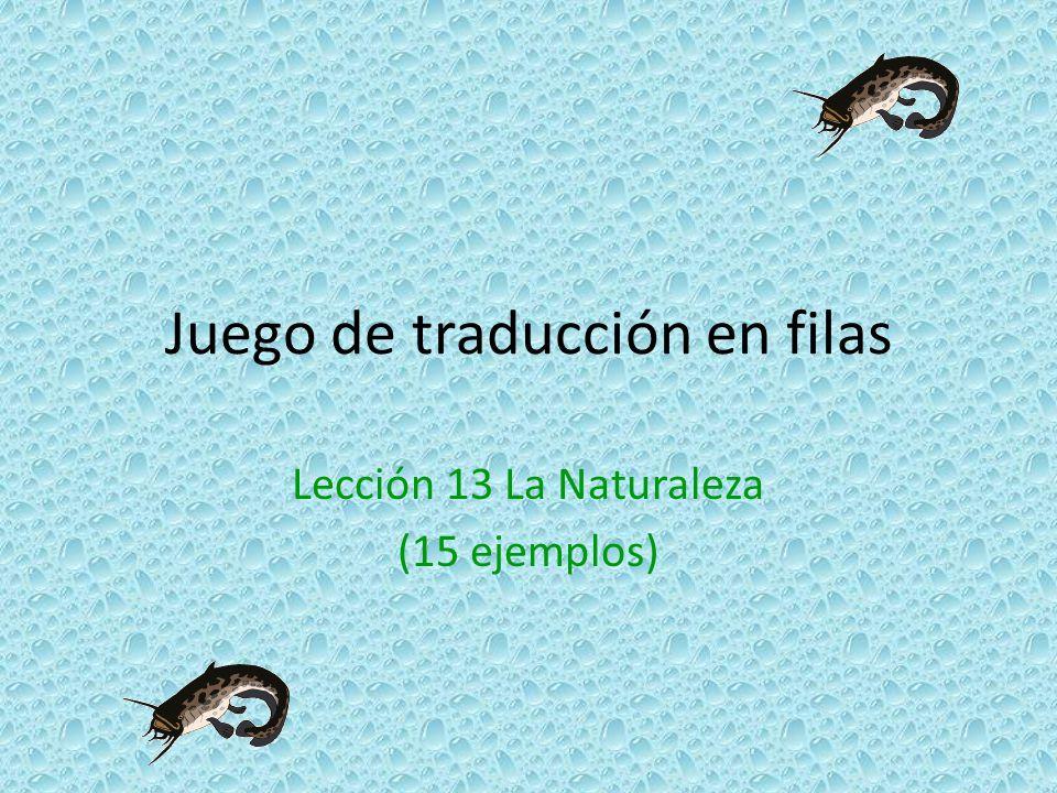 Juego de traducción en filas Lección 13 La Naturaleza (15 ejemplos)