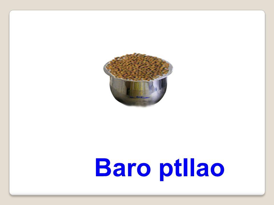 Baro ptIlao