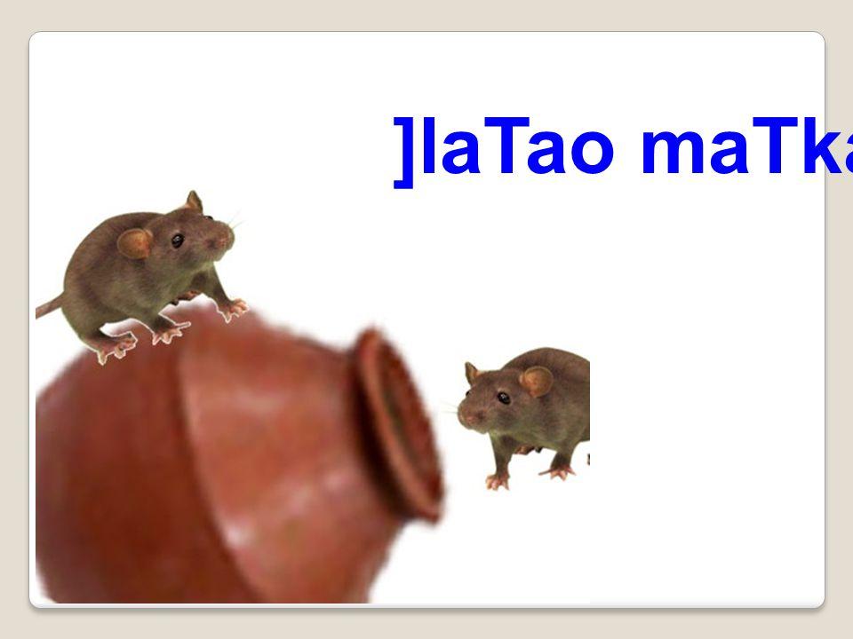 ]laTao maTka