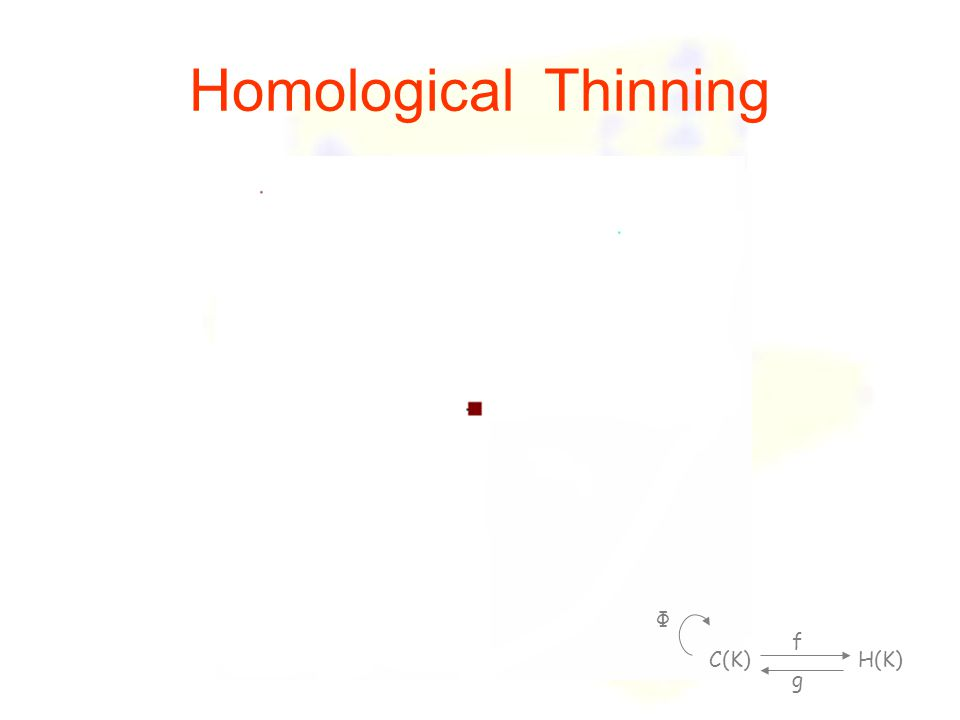 Homological Thinning C(K) H(K) f g Φ