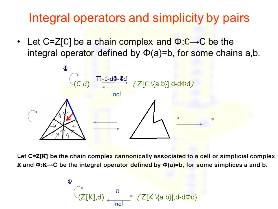 Integral operators and simplicity by pairs Let C=Z[ c ] be a chain complex and Φ: C →C be the integral operator defined by Φ(a)=b, for some chains a,b