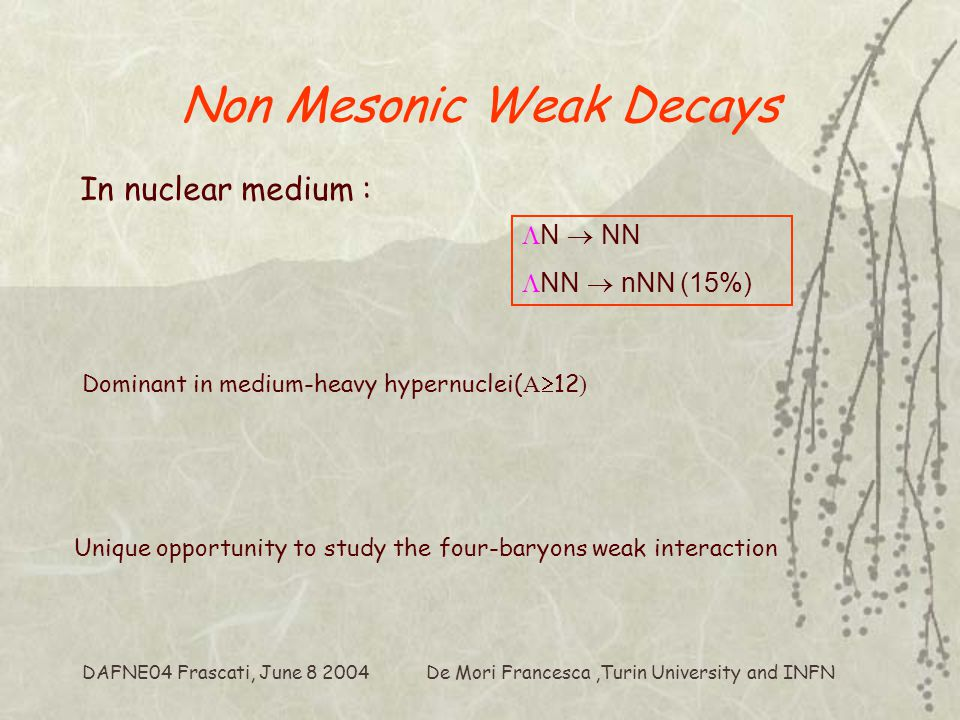 De Mori Francesca,Turin University and INFN DAFNE04 Frascati, June 8 2004 Non Mesonic Weak Decays In nuclear medium :  N  NN  NN  nNN (15%) Dominant in medium-heavy hypernuclei( A  12 ) Unique opportunity to study the four-baryons weak interaction