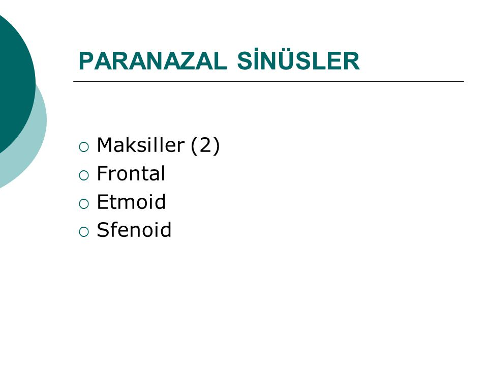 PARANAZAL SİNÜSLER  Maksiller (2)  Frontal  Etmoid  Sfenoid
