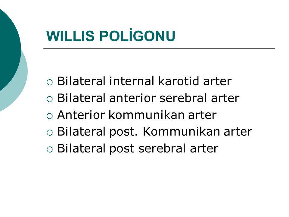 WILLIS POLİGONU  Bilateral internal karotid arter  Bilateral anterior serebral arter  Anterior kommunikan arter  Bilateral post. Kommunikan arter