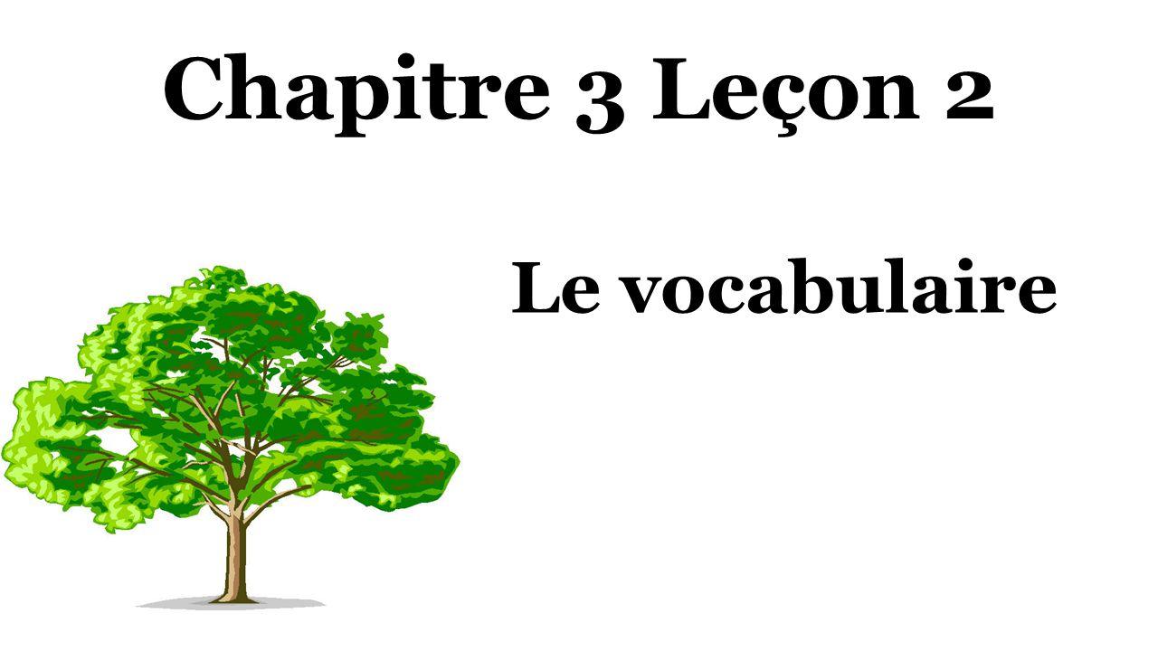 Chapitre 3 Leçon 2 Le vocabulaire