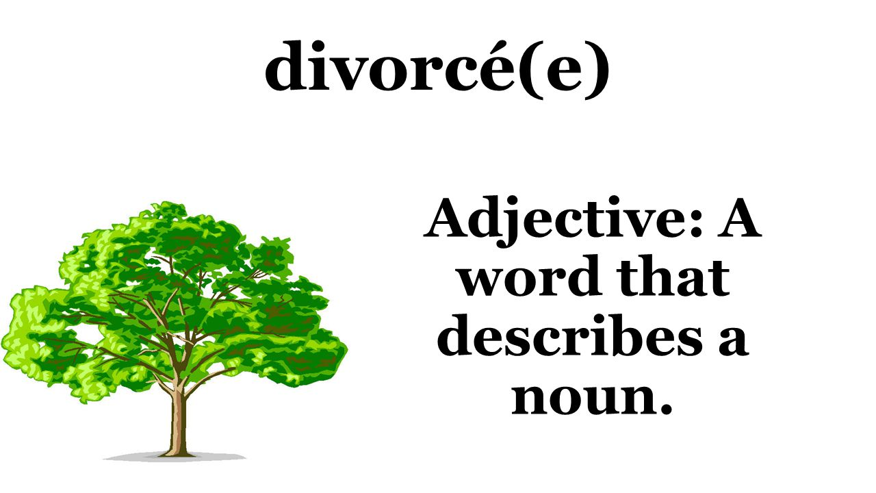 divorcé(e) Adjective: A word that describes a noun.