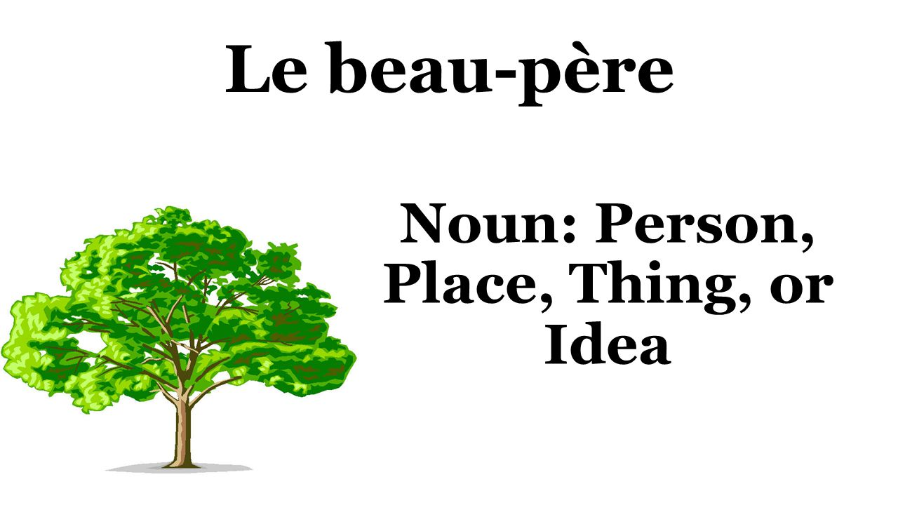 Le beau-père Noun: Person, Place, Thing, or Idea