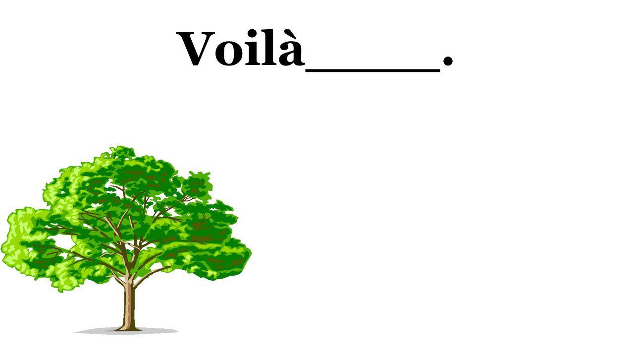 Voilà____.