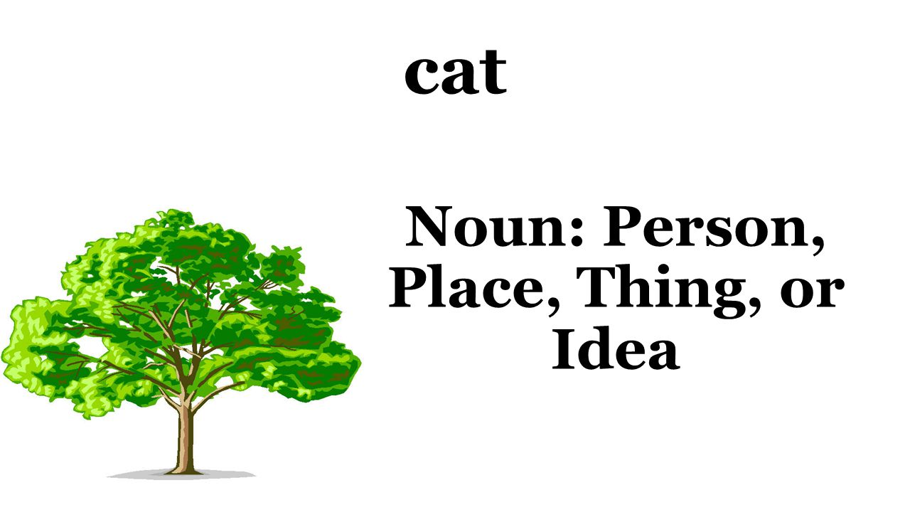 cat Noun: Person, Place, Thing, or Idea
