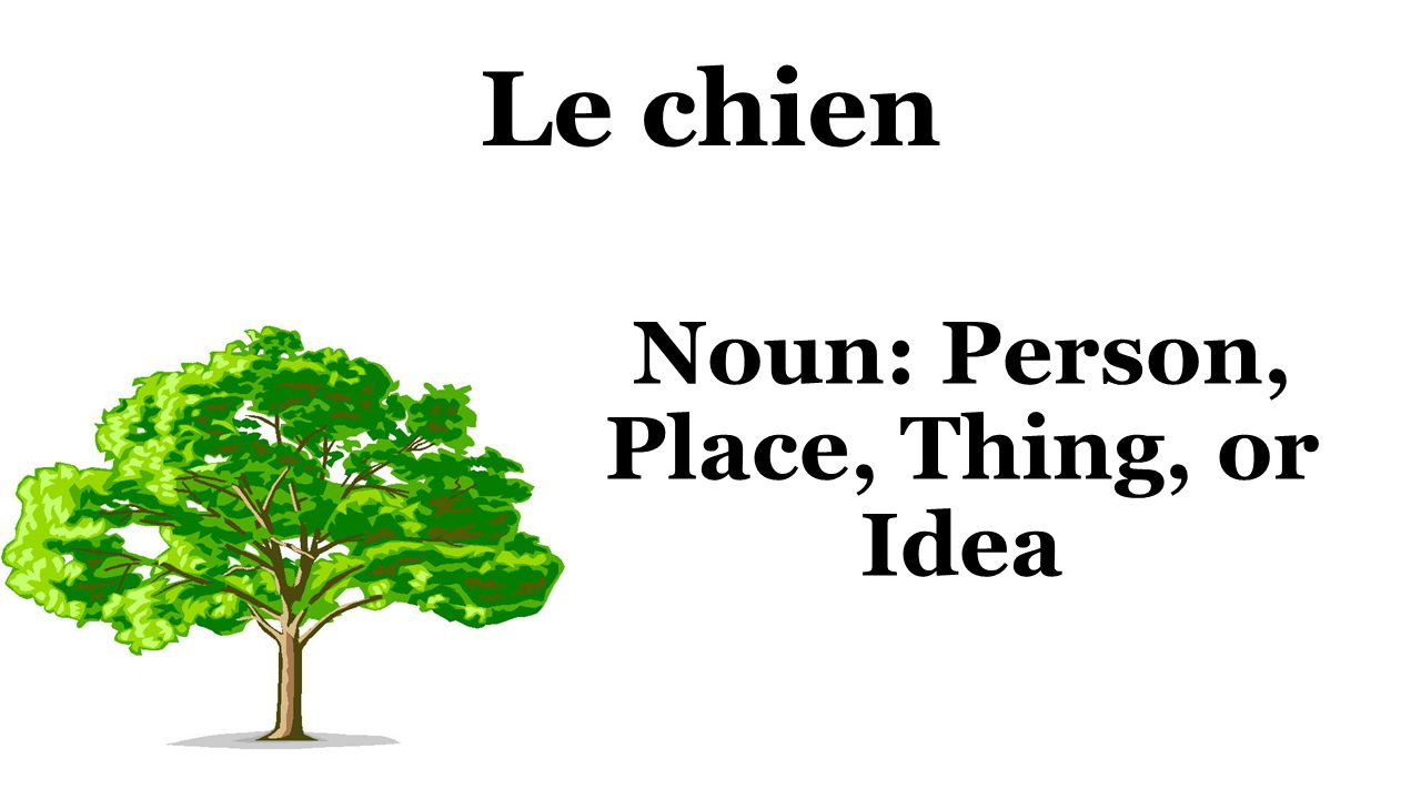 Le chien Noun: Person, Place, Thing, or Idea
