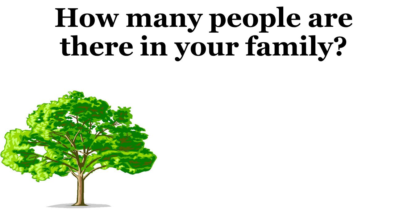 How many people are there in your family