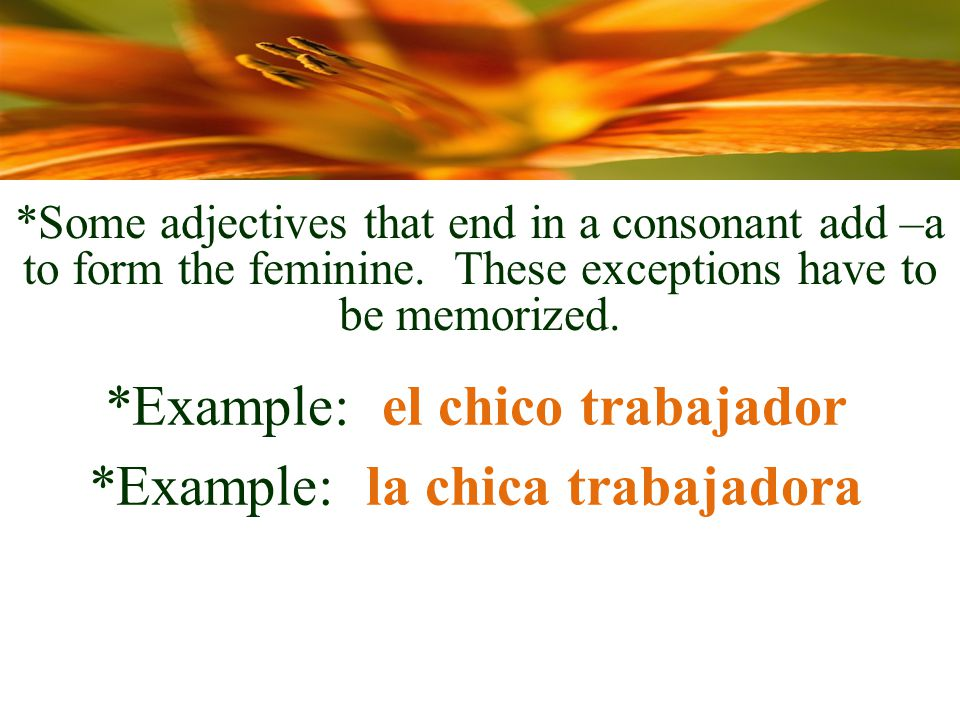 *Some adjectives that end in a consonant add –a to form the feminine.