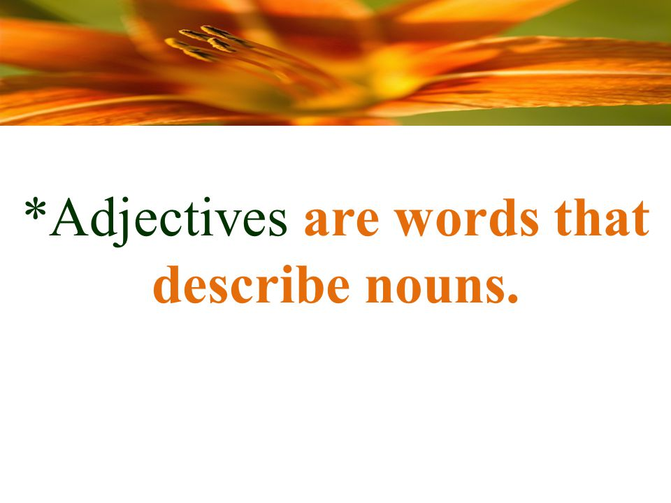 *Adjectives are words that describe nouns.