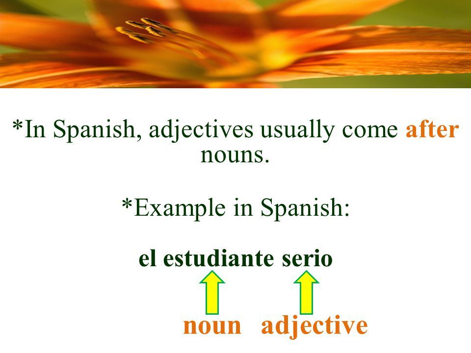 *Example in Spanish: el estudiante serio nounadjective *In Spanish, adjectives usually come after nouns.