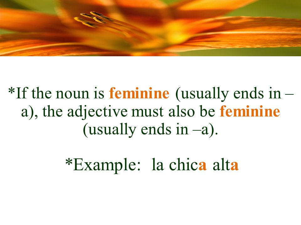 *If the noun is feminine (usually ends in – a), the adjective must also be feminine (usually ends in –a).
