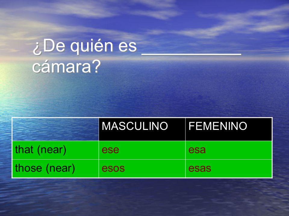 ¿De quién es __________ cámara? MASCULINOFEMENINO that (near)ese those (near)esosesas esa