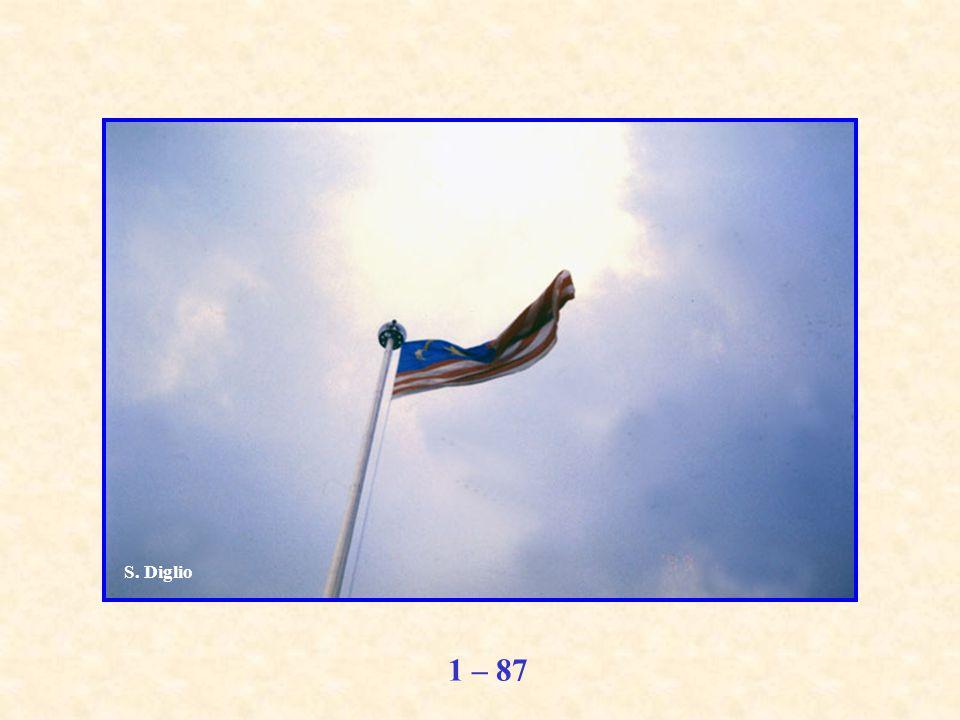 1 – 87 S. Diglio