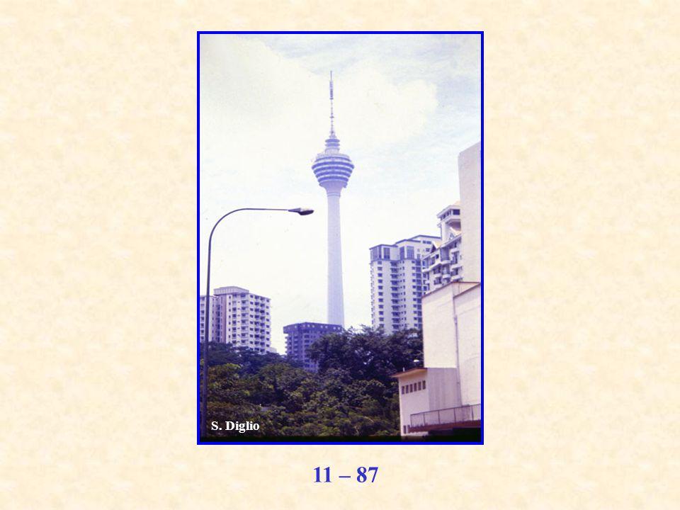 11 – 87 S. Diglio