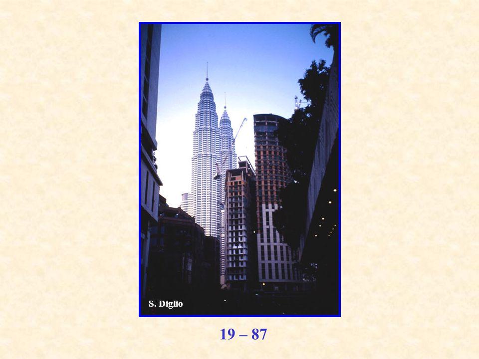 19 – 87 S. Diglio