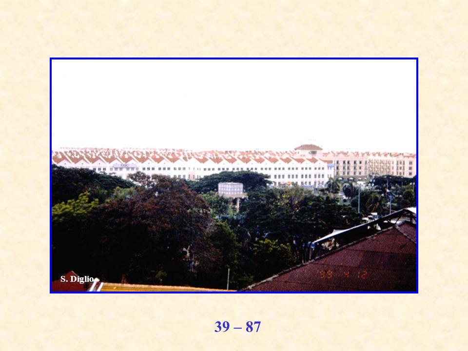 39 – 87 S. Diglio