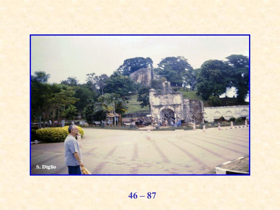 46 – 87 S. Diglio