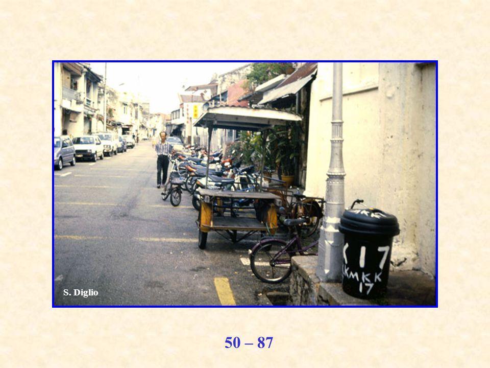 50 – 87 S. Diglio