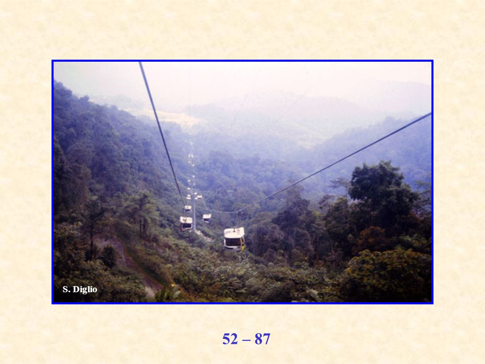 52 – 87 S. Diglio