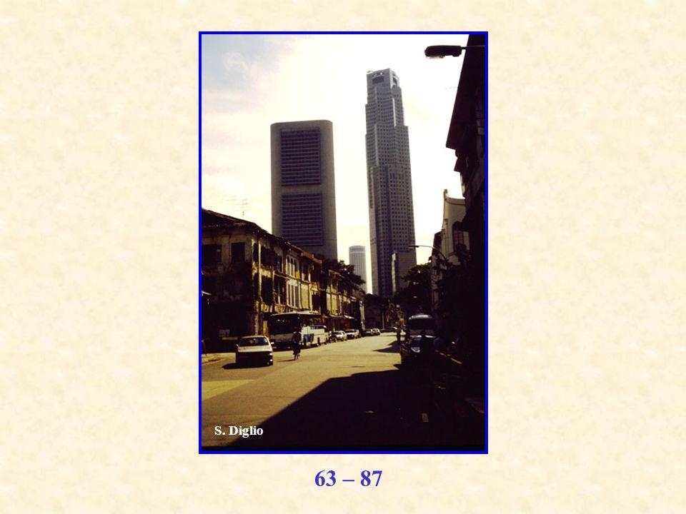 63 – 87 S. Diglio
