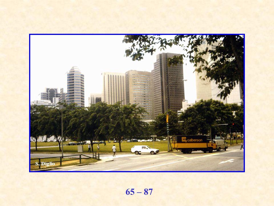 65 – 87 S. Diglio