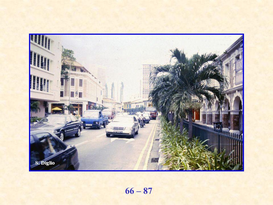 66 – 87 S. Diglio