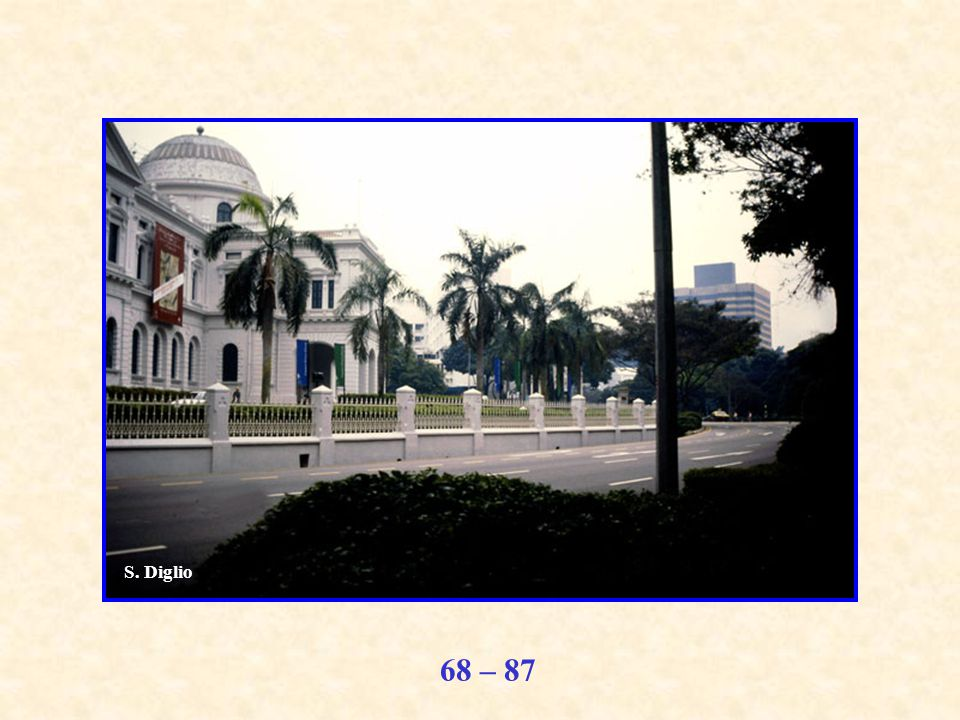 68 – 87 S. Diglio