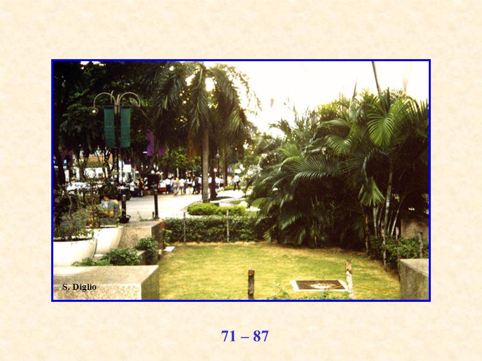 71 – 87 S. Diglio