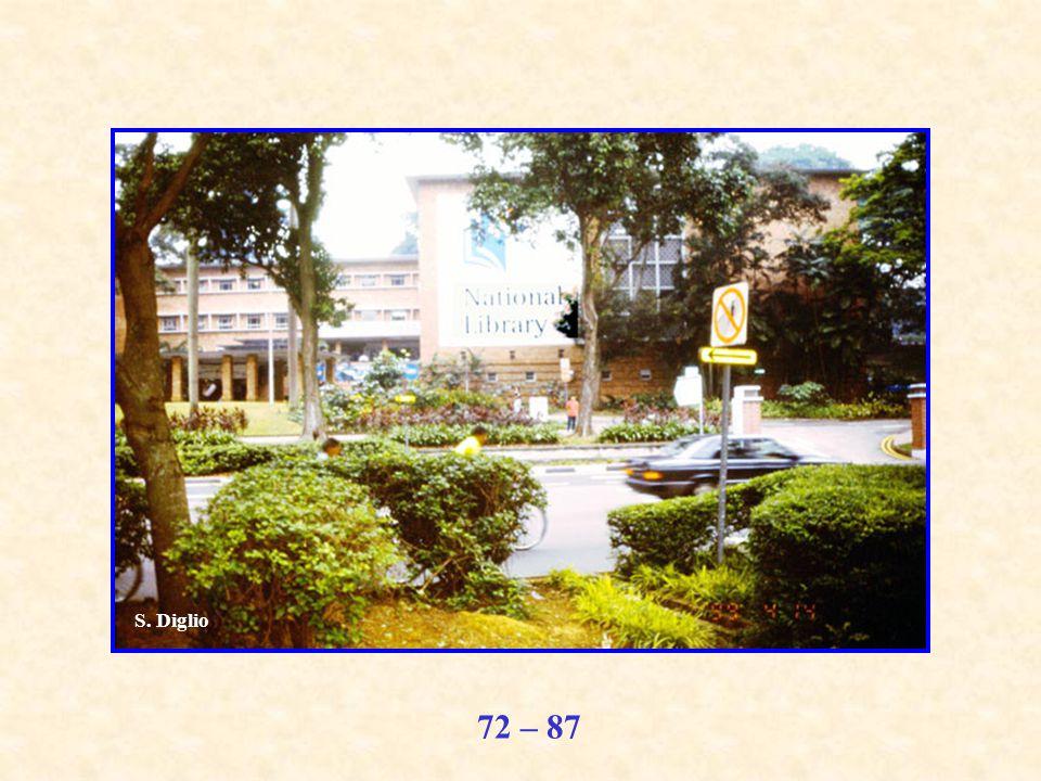 72 – 87 S. Diglio
