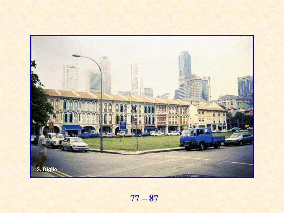 77 – 87 S. Diglio