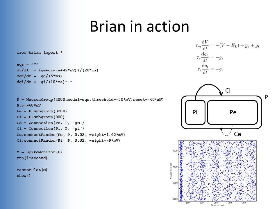 from brian import * eqs = dv/dt = (ge+gi-(v+49*mV))/(20*ms) dge/dt = -ge/(5*ms) dgi/dt = -gi/(10*ms) P = NeuronGroup(4000,model=eqs,threshold=-50*mV,reset=-60*mV) P.v=-60*mV Pe = P.subgroup(3200) Pi = P.subgroup(800) Ce = Connection(Pe, P, ge ) Ci = Connection(Pi, P, gi ) Ce.connectRandom(Pe, P, 0.02, weight=1.62*mV) Ci.connectRandom(Pi, P, 0.02, weight=-9*mV) M = SpikeMonitor(P) run(1*second) rasterPlot(M) show() Brian in action PiPe Ce Ci P