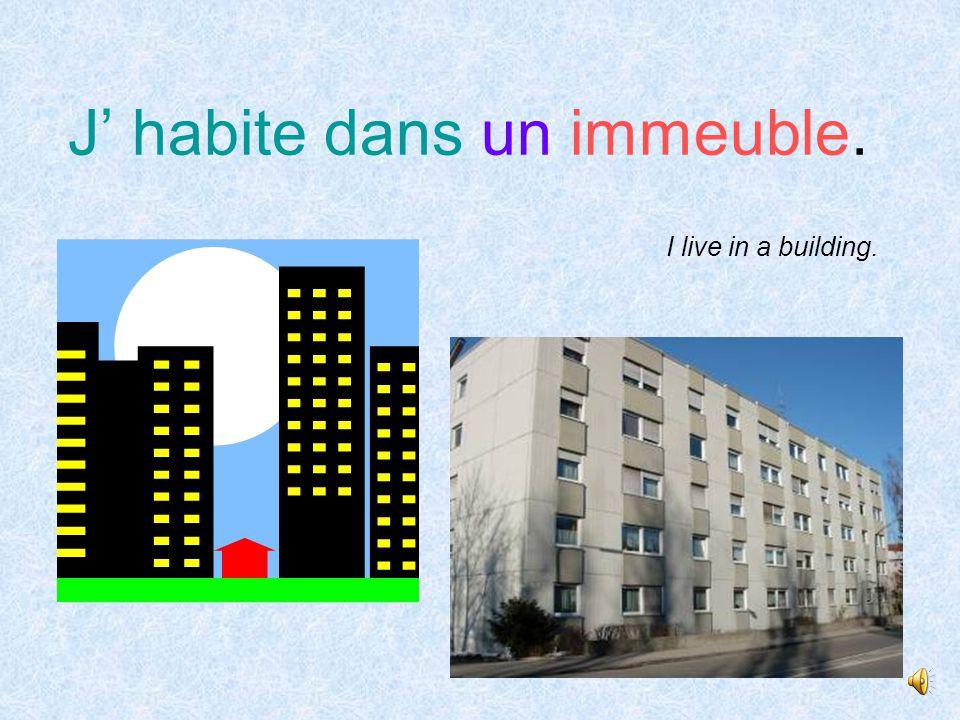 Tu habites dans quelle sorte de maison In what type of house do you live