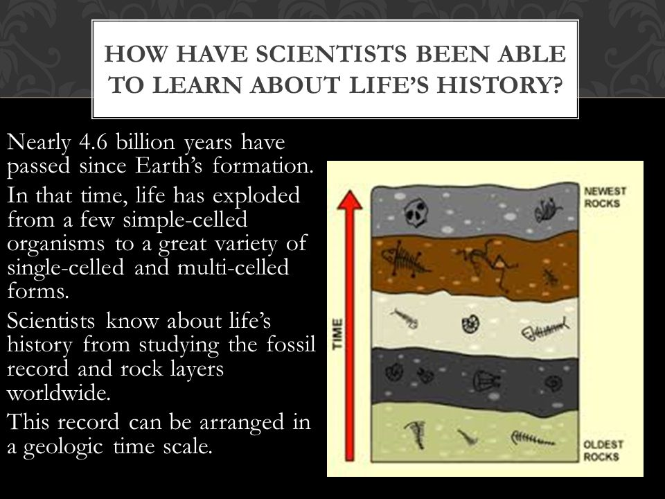 Nearly 4.6 billion years have passed since Earth's formation.