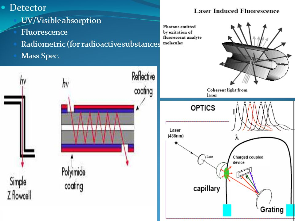 Detector UV/Visible absorption Fluorescence Radiometric (for radioactive substances) Mass Spec.