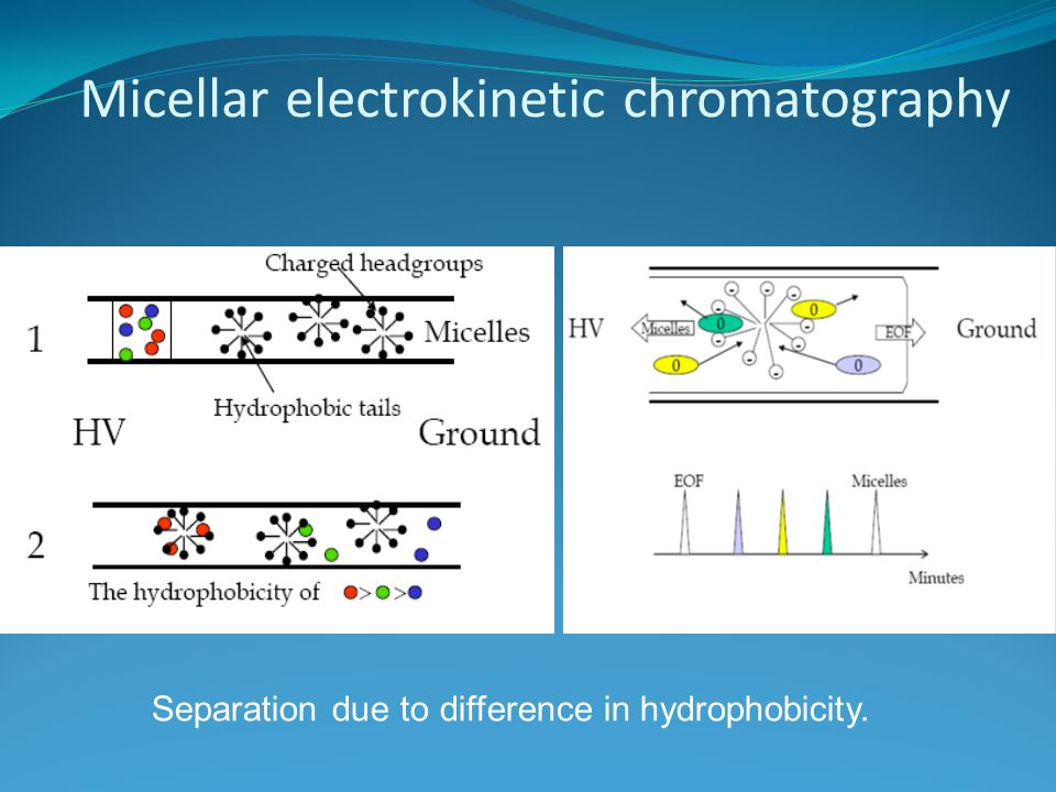 Micellar electrokinetic chromatography Separation due to difference in hydrophobicity.