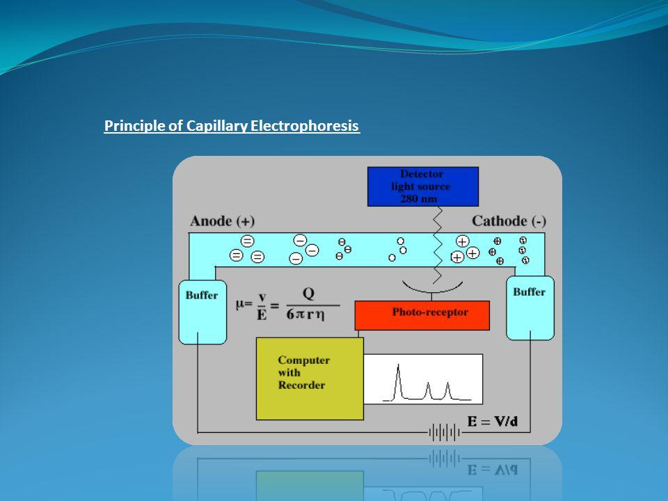 Principle of Capillary Electrophoresis