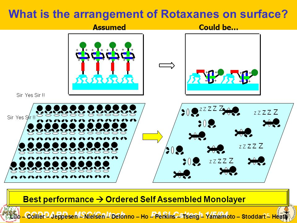GODDARD - MSC/Caltech PASI-Caltech 1/5/04 25 Luo – Collier – Jeppesen – Nielsen – DeIonno – Ho – Perkins – Tseng – Yamamoto – Stoddart – Heath Best performance  Ordered Self Assembled Monolayer What is the arrangement of Rotaxanes on surface