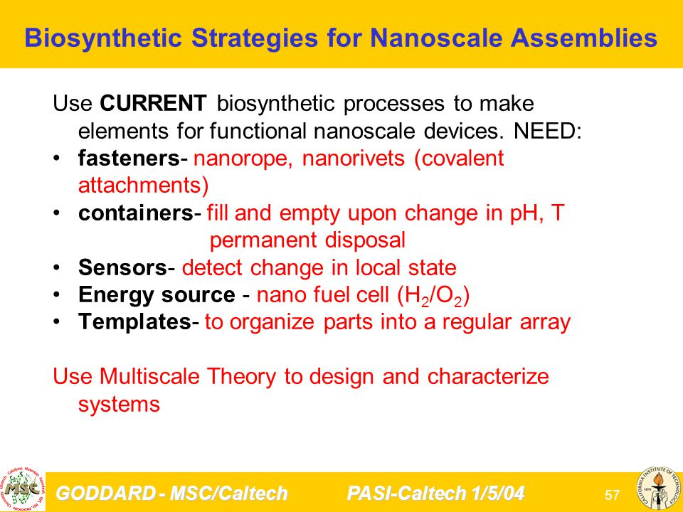 GODDARD - MSC/Caltech PASI-Caltech 1/5/04 57 Biosynthetic Strategies for Nanoscale Assemblies Use CURRENT biosynthetic processes to make elements for functional nanoscale devices.
