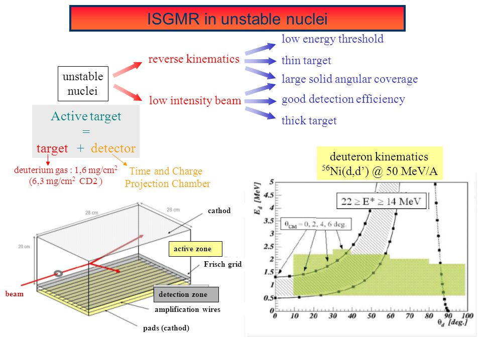 reverse kinematics unstable nuclei good detection efficiency thick target low intensity beam large solid angular coverage low energy threshold thin target ISGMR in unstable nuclei Time and Charge Projection Chamber Active target = target + detector deuterium gas : 1,6 mg/cm 2 (6,3 mg/cm 2 CD2 ) deuteron kinematics 56 Ni(d,d') @ 50 MeV/A cathod Frisch grid beam amplification wires pads (cathod) detection zone active zone