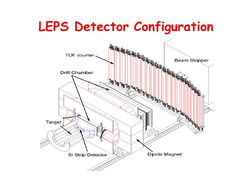 LEPS Detector Configuration