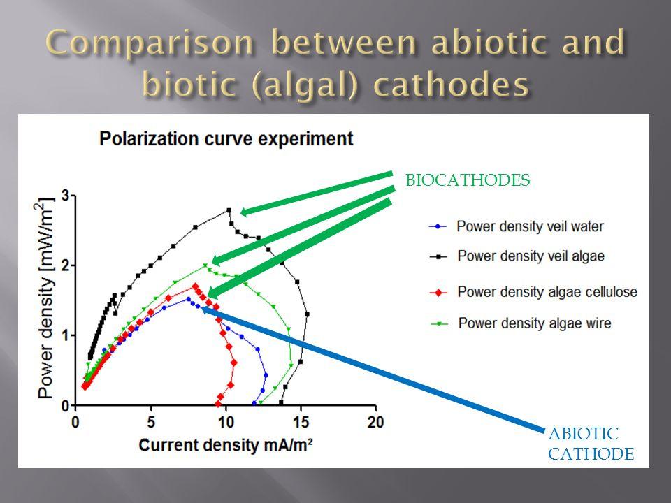 ABIOTIC CATHODE BIOCATHODES