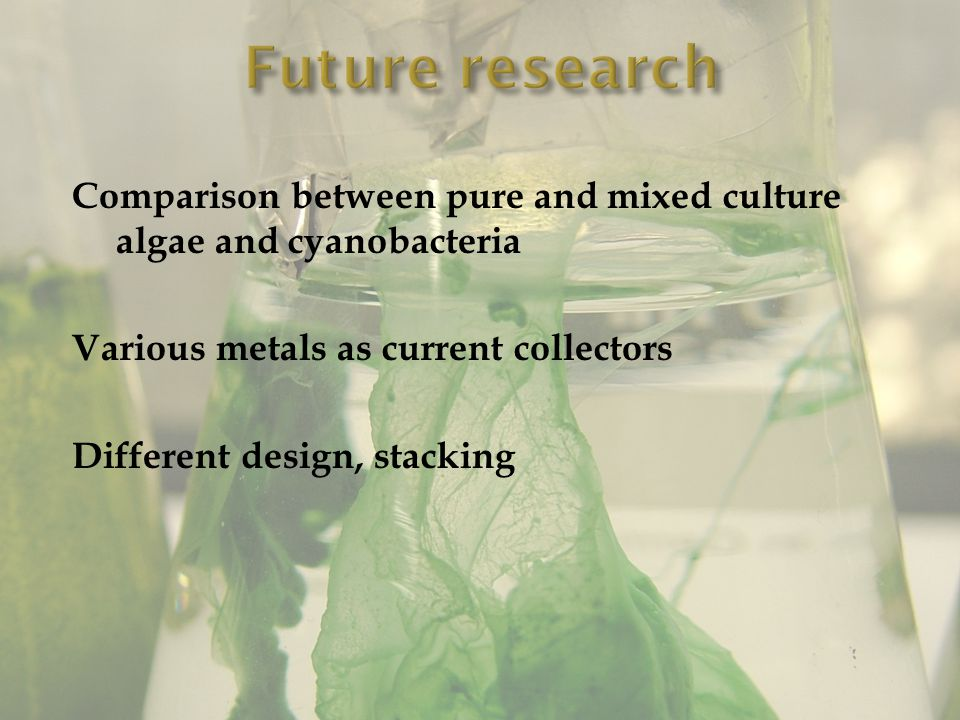 Comparison between pure and mixed culture algae and cyanobacteria Various metals as current collectors Different design, stacking