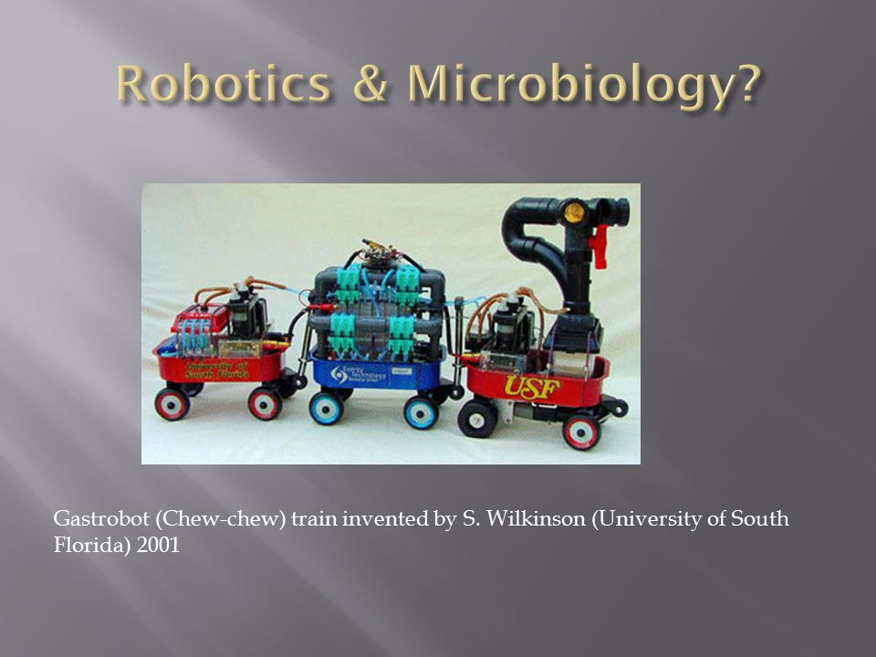 Gastrobot (Chew-chew) train invented by S. Wilkinson (University of South Florida) 2001